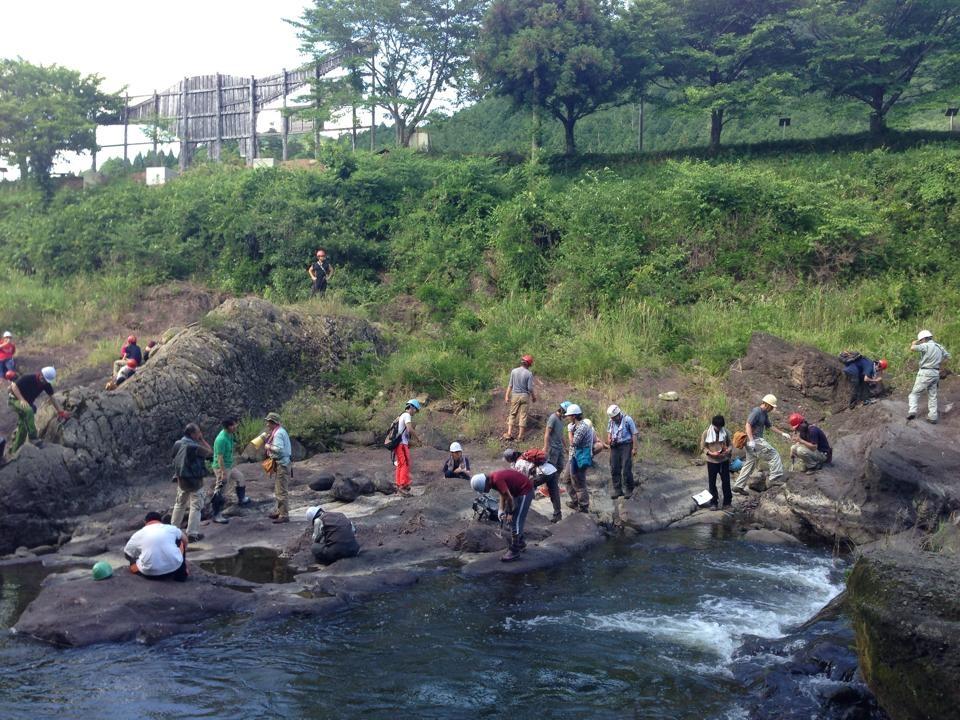 丹波竜化石発掘現場