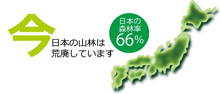 今、日本の山林は荒廃しています