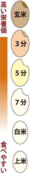 分つき米の種類