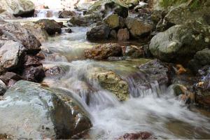 ミネラル豊かな水